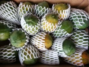 Papaya-Kiste