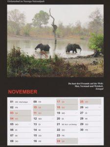 Kalender 2018 / November