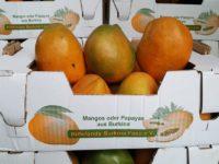 Leckere Mangos gestapelt