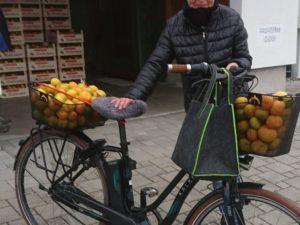 ökologischer Mandarinentransport