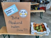Mango-Verkauf in Corona Zeiten